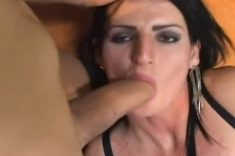 Transexual lesbians Playing