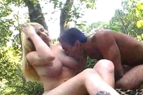 Romantic pounding In The Woods